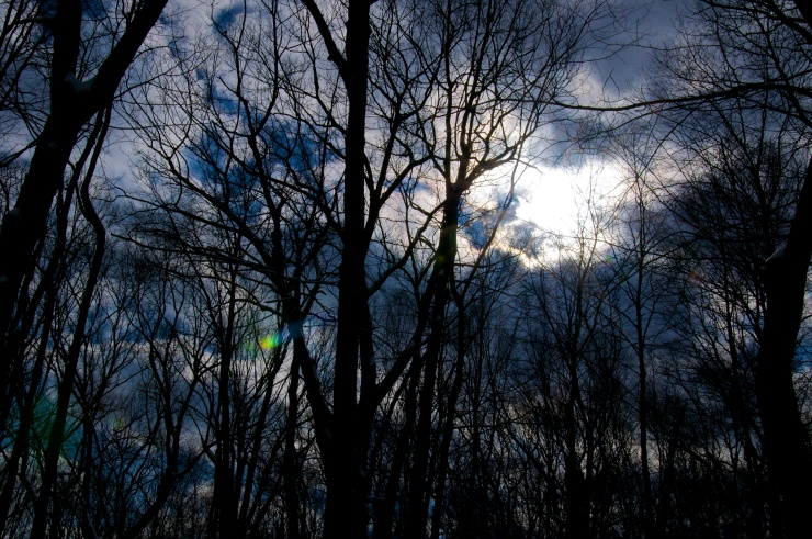 Reaching and clawing to a sky that is already closing up…