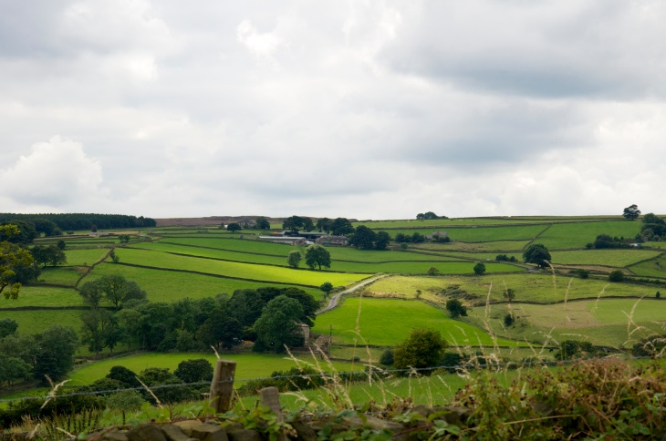 The beautiful Mayfield Valley.