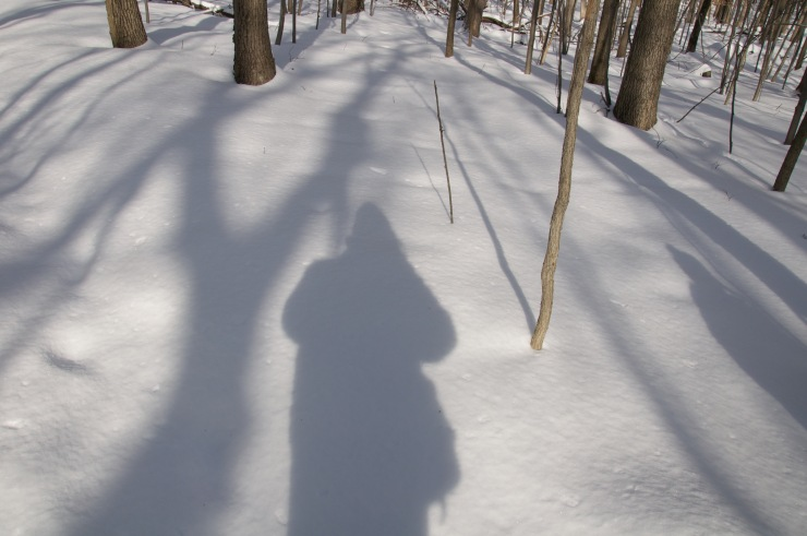 My shadow in the snow.