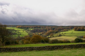 Mayfield Valley