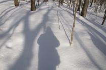 Shadow of Self